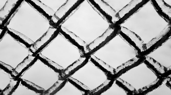 This is an image of a chain link fence. The fence is covered in a thin layer of ice.