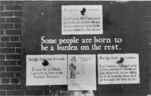 "The image's most prominent text reads ""Some people are born to be a burden on the rest,"" and used flashing lights to indicate statistics on the birth of ""high-grade"" and ""low-grade"" people."