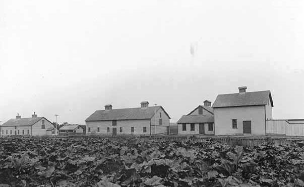 This is an image of a slaughter house and field at a state hospital for the insane in the 1920's.